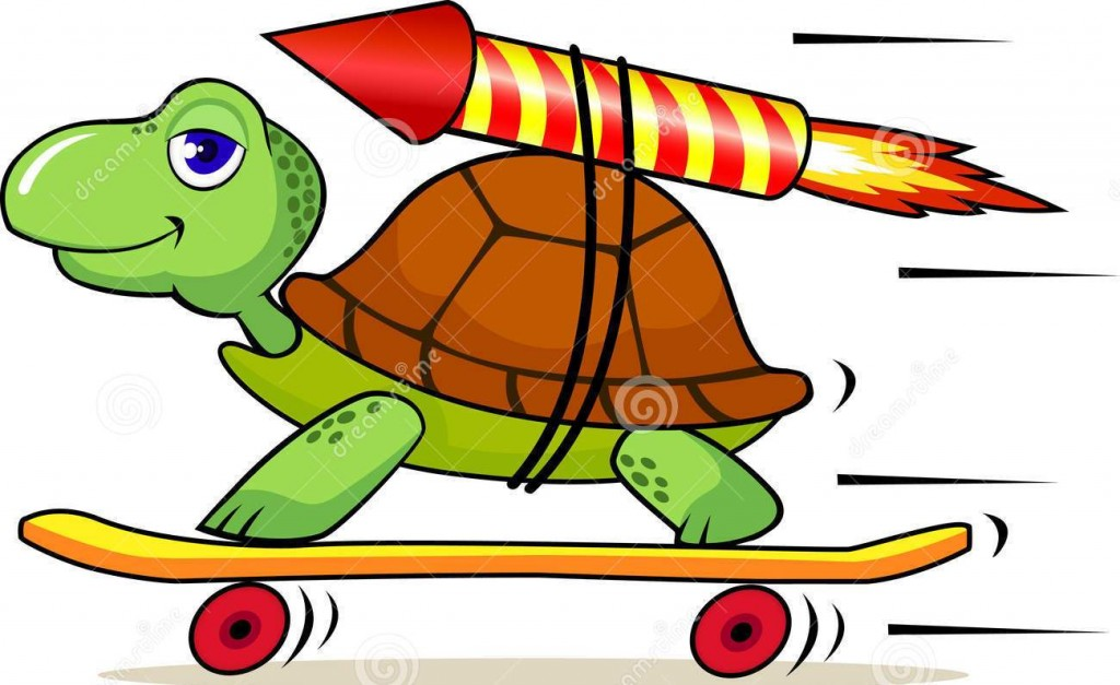 http://www.dreamstime.com/royalty-free-stock-image-funny-turtle-rocket-image13954996
