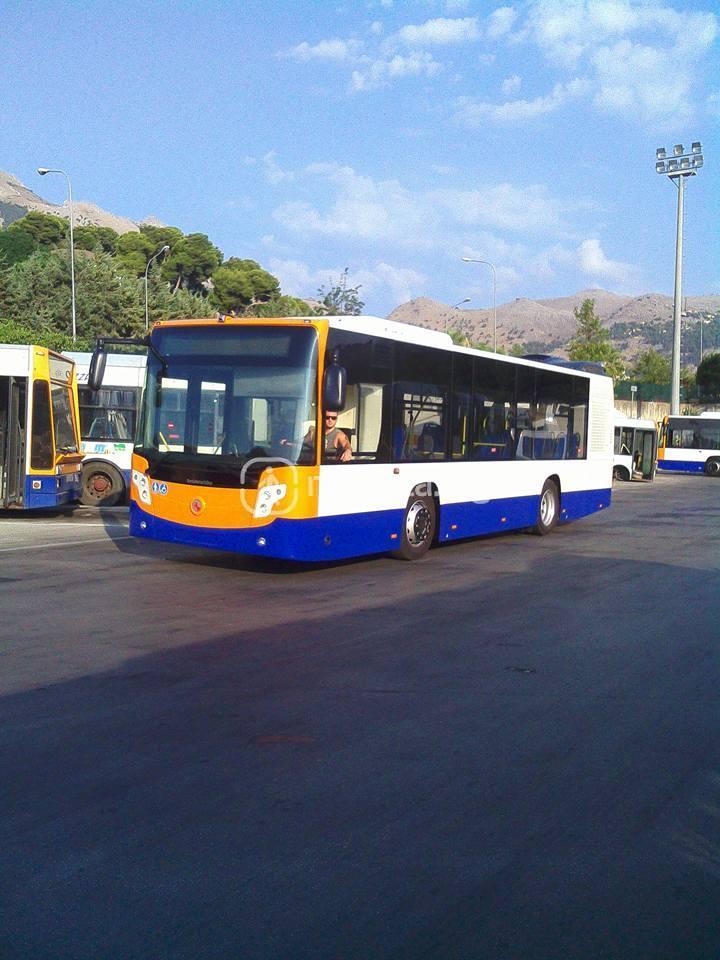 nuovo bus