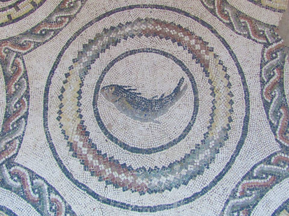 Mosaici Piazza Sett'Angeli 6
