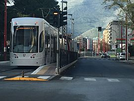 Il_tram_di_Palermo_in_servizio_in_via_Leonardo_da_Vinci_3